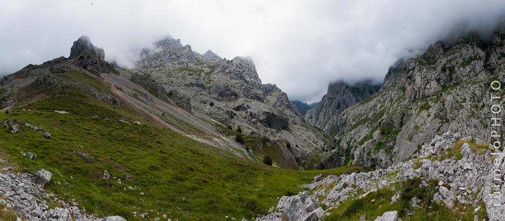 DSC_4246-Trails